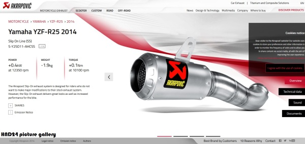 Akrapovic slip on R25 (1)