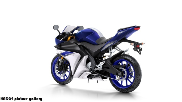 Yamaha YZF-R125 2015 (5)