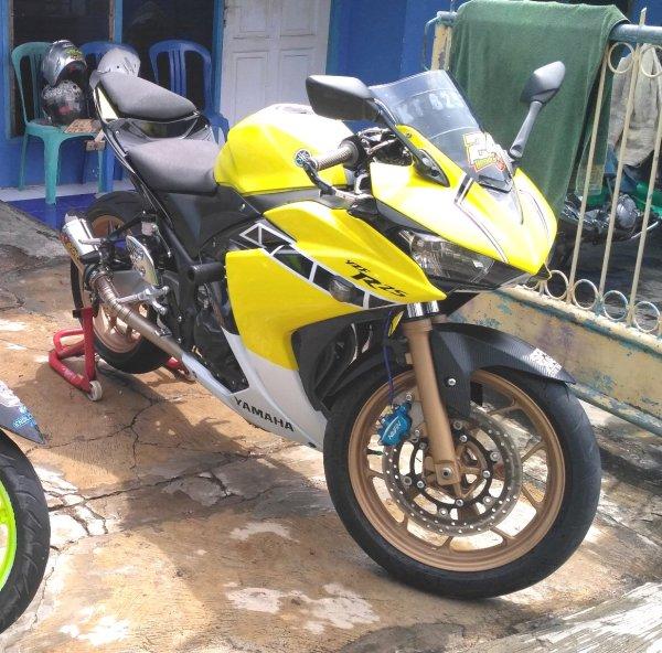 Yamaha YZF-R25 2014 (3)